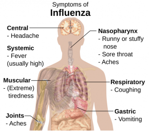 symptoms-of-influenza-niagra-falls